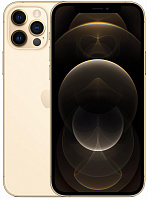 Apple iPhone 12 Pro 512GB Gold (MGMW3/MGM23)
